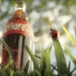 Er was eens een cola flesje en heel veel dorstige dieren